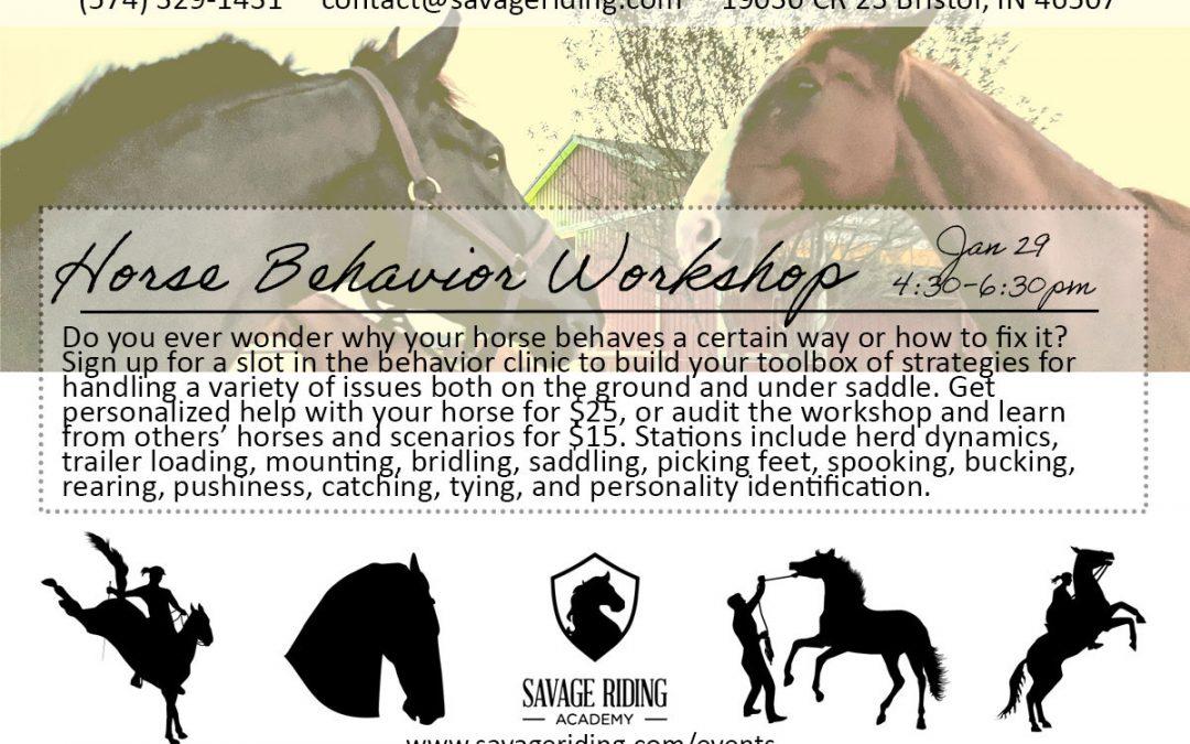 Horse Behavior Workshop