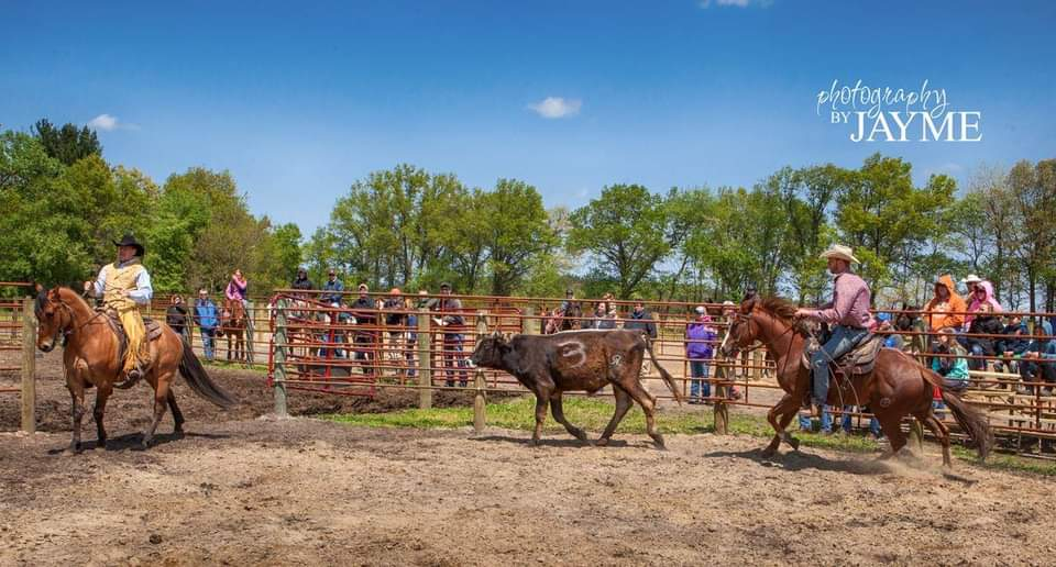 CANCELED – Cow Clinic with Dallas Schleg